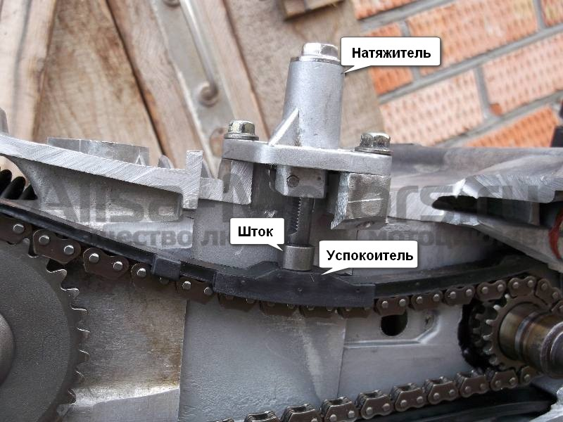 Устройство в разрезе автоматического натяжителя цепи ГРМ скутера